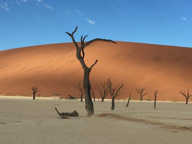 sitios-viaje-impresionante-namibia-viajes-